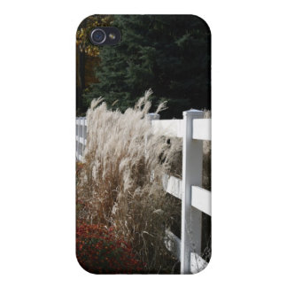 Fall Comes To The Hollow iPhone 4/4S Case