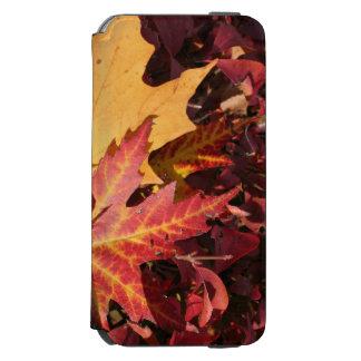 Fall Contrast iPhone 6/6s Wallet Case