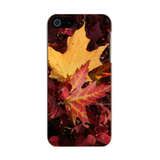 Fall Contrast Metallic Phone Case For iPhone SE/5/5s