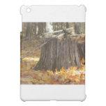 fall cover for the iPad mini