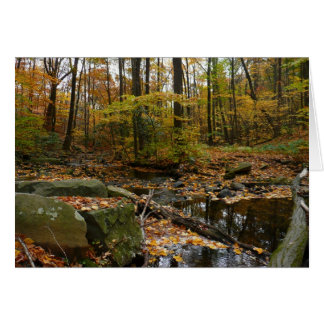 Fall Creek and Reflection Card (Blank Inside)