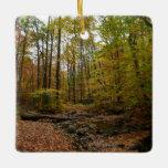 Fall Creek at Laurel Hill State Park Ceramic Ornament