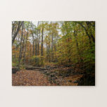 Fall Creek at Laurel Hill State Park Jigsaw Puzzle