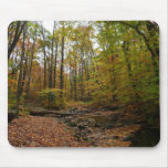 Fall Creek at Laurel Hill State Park Mouse Pad