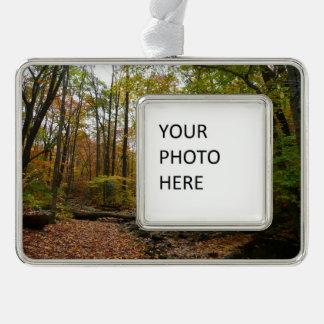 Fall Creek at Laurel Hill State Park Ornament