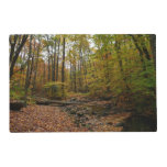 Fall Creek at Laurel Hill State Park Placemat