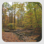 Fall Creek at Laurel Hill State Park Square Sticker