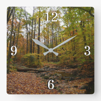 Fall Creek at Laurel Hill State Park Square Wall Clock