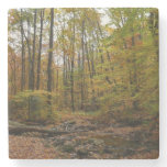 Fall Creek at Laurel Hill State Park Stone Coaster