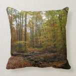 Fall Creek at Laurel Hill State Park Throw Pillow