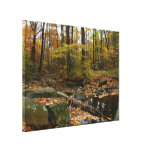 Fall Creek with Reflection at Laurel Hill Park Canvas Print