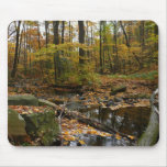 Fall Creek with Reflection at Laurel Hill Park Mouse Pad