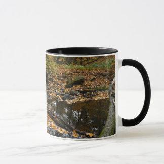 Fall Creek with Reflection at Laurel Hill Park Mug