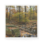 Fall Creek with Reflection at Laurel Hill Park Paper Napkin