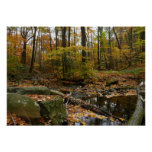 Fall Creek with Reflection at Laurel Hill Park Poster