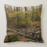 Fall Creek with Reflection at Laurel Hill Park Throw Pillow