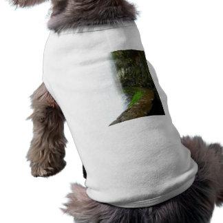 Fall Curve T-Shirt