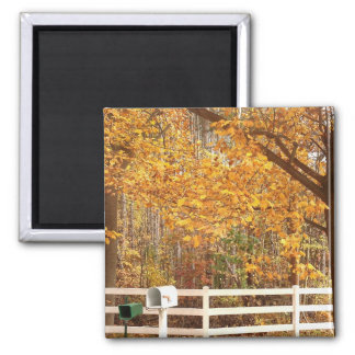 Fall Day magnet