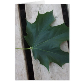Fall Days Card