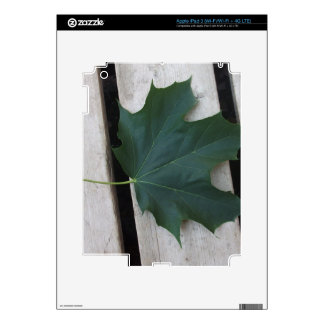 Fall Days Decal For iPad 3