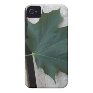 Fall Days iPhone 4 Cover