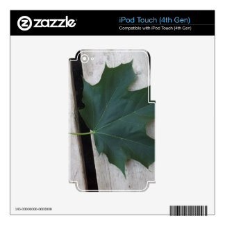 Fall Days iPod Touch 4G Skin