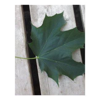 Fall Days Letterhead