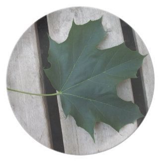 Fall Days Melamine Plate