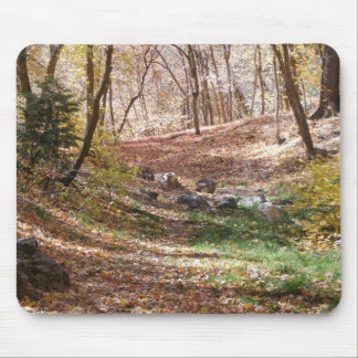 Fall Days Mouse Pad
