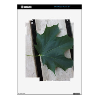 Fall Days Skins For The iPad 2
