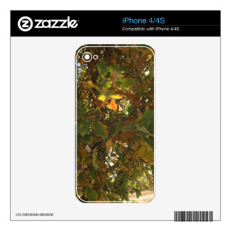 Fall Decals For iPhone 4S