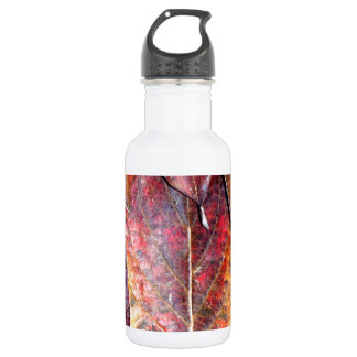Fall Dogwood Leaves Stainless Steel Water Bottle