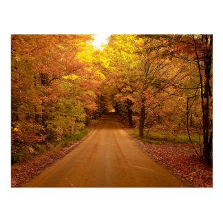 Fall Drive Color Tour Postcard