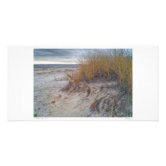 Fall Dunes Photo Card