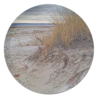 Fall Dunes Photo Plate