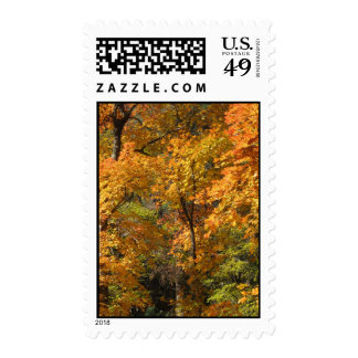 Fall Fantasy (10) Postage Stamps
