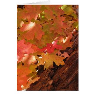 Fall Fantasy (18) Greeting Cards