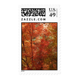 Fall Fantasy (21) Postage Stamps
