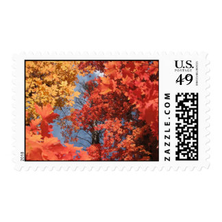 Fall Fantasy (2) Postage Stamps