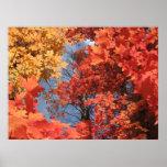 Fall Fantasy (2) Poster