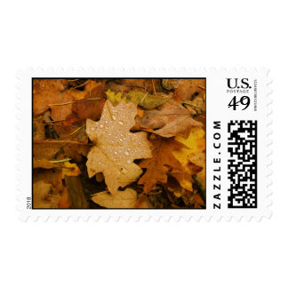 Fall Fantasy (30) Postage Stamps