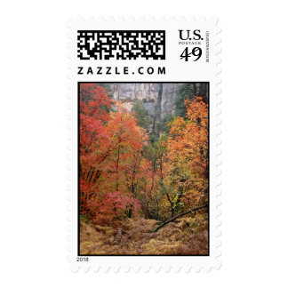 Fall Fantasy (5) Postage Stamps