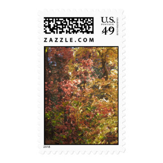 Fall Fantasy (7) Postage Stamps