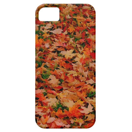 FALL FELL iPhone SE/5/5s CASE