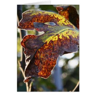 Fall fig leaf card