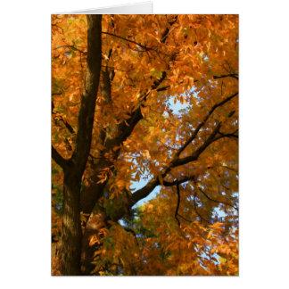 Fall Finery Card