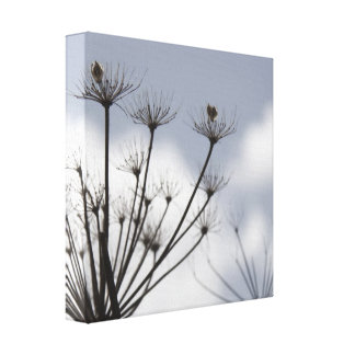 Fall Flowers Small Box Canvas