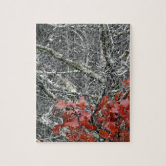 Fall Foilage Jigsaw Puzzle