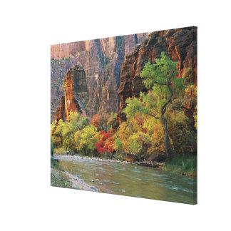 Fall foliage along Virgin River near gateway to Canvas Print