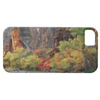 Fall foliage along Virgin River near gateway to iPhone 5 Cases